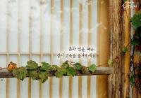 """[감동] 법륜스님의 희망편지 """"혼자 있을 땐 잠시 고독을 즐겨보세요"""""""