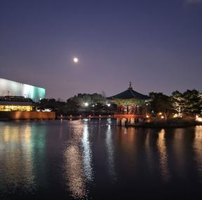 국립박물관 거울호 야경