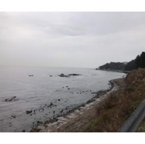 바다 가고 싶네..