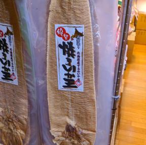 일본의 흔한 오징어 ㅎㅎ