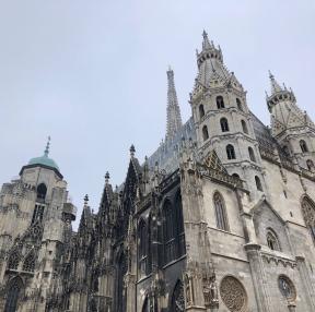 비엔나 입니다.