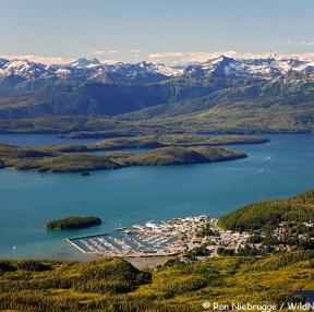 알래스카 풍경~