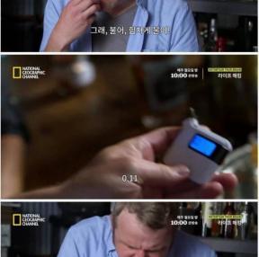 음주측정기 속이기 가능?