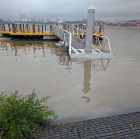 수위높아진 한강