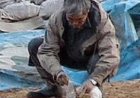 일본 고고학이 폭망하는 순간