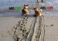 자동차 ABS 가장 좋은 예시