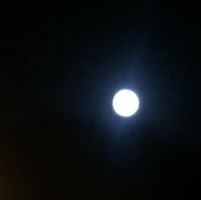 달이 이쁘네요