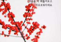 """[감동] 법륜스님의 희망편지 """"자꾸 결심하고 각오하면  스트레스가 될 뿐입니다  마음을 딱 꿰뚫어보고 자유로워지세요"""""""