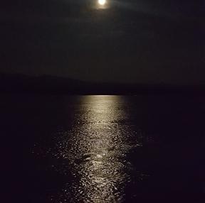 메콩강 달빛