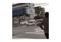 일본에 간 제비의 힘!