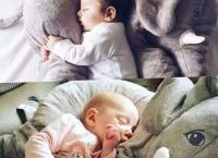 아기들 선물 요즘 유명한 안고자는 신생아 코끼리애착인형