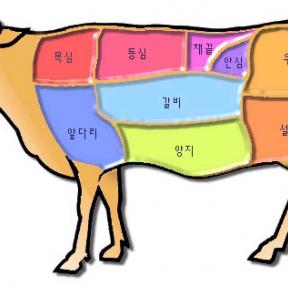 소고기 먹고싶...