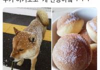 개맛나는빵?!