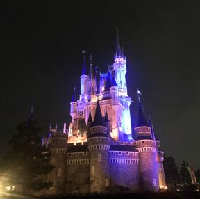 도쿄 디즈니랜드