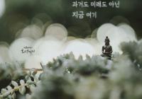 """[감동] 법륜스님의 희망편지 """"과거도 미래도 아닌 지금 여기"""""""