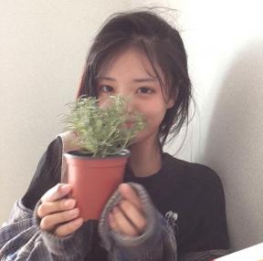 건강한 식물 키웁시다.