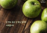 """[감동] 법륜스님의 희망편지 """"단 맛도 있고 신 맛도 있어야 사과입니다"""""""