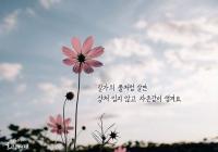 """[감동] 법륜스님의 희망편지 """"길가의 풀처럼 살면 상처 입지 않고 자존감이 생겨요"""""""