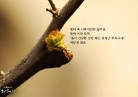 """[감동] 법륜스님의 희망편지 """"병이 나쁜 것만은 아니에요"""""""