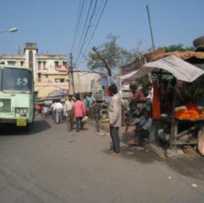 인도 여행 중 찍은 사진