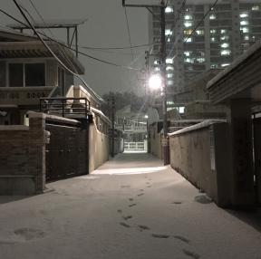 며칠전 눈온날 우리집골목길