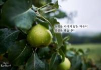 """[감동] 법륜스님의 희망편지 """"부자가 되고 싶어요"""""""