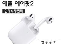 최신형 애플 에어팟 2 (약 213,000원)