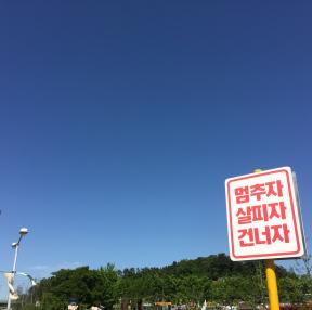 김유정역 여행