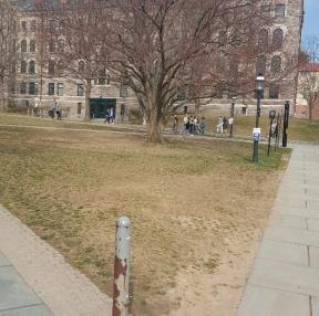 프린스턴 대학교 교정