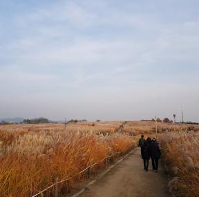 상암동 하늘공원
