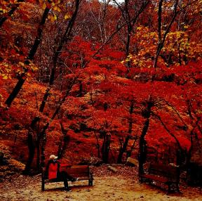 가을여행1