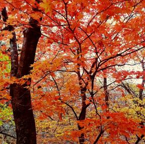 가을여행2