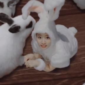 심쿵 토끼