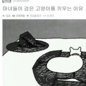마녀들이 검은 고양이를 키우는 이유